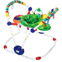 Baby Einstein Jumperoo Musical Motion