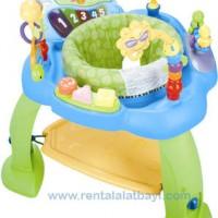 IQ Baby Jumping Chair