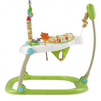Fisher Price Space Saver Rain Forest Jumperoo