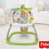 Fisher Price Space Saver Rain Forest Jumper